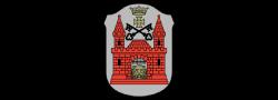 Rīgas pilsētas pašvaldība